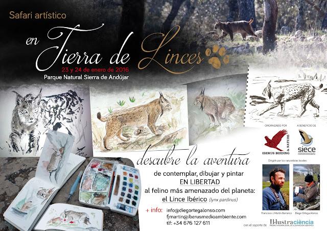 Safari Artístico EN TIERRA DE LINCES. Diego Ortega Alonso Wildlife Art taller de pintura