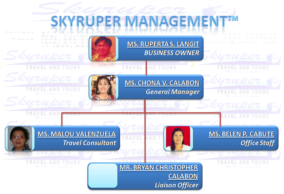 organizational structure of travel agency