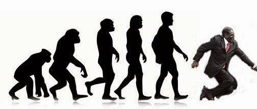 Human evolution takes a Mugabe fall via geniushowto.blogspot.com #mugabefalls memes