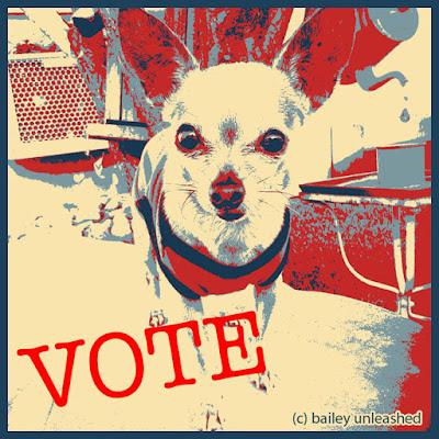 vote via baileyunleashed.com