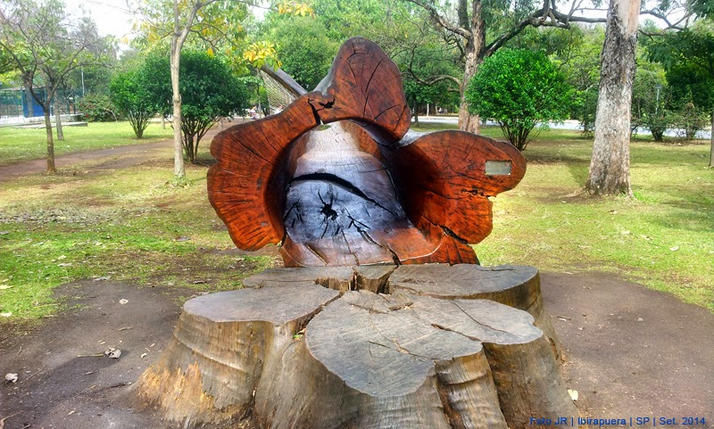 Escultura orgânica com tronco de árvore no Parque do Ibirapuera