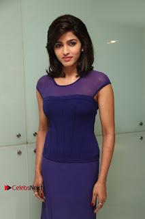 Tamil Actress Dhansika Stills in Purple Long Dress at Simba Audio Launch  0006.jpg