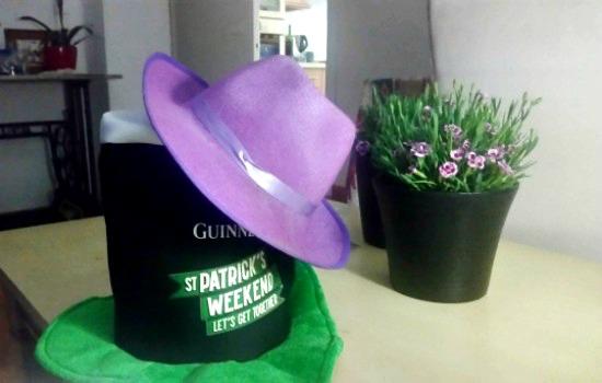 Se ven dos sombreros con una planta de clavelillos