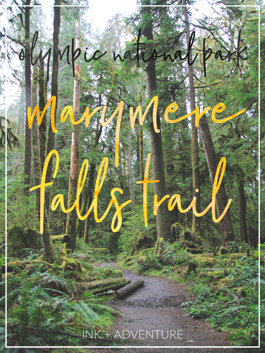 take a short hike through a magical mossy forest to visit the enchanting Marymere Falls, in the heart of the Olympic National Park, Washington