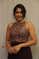 Actress Regina Candra Latest Stills in Maroon Long Dress at Saravanan Irukka Bayamaen Movie Success Meet .COM 0027.jpg