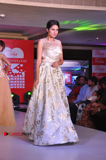 South Indian Celebrities Pos at Love For Handloom Collection Fashion Show  0122.jpg