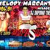 CD JAPA SOM MELODY MARCANTE - DJ SAPINHO THE BEST