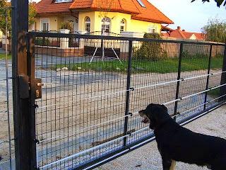 Vinex Bt kutya házi villanypásztor