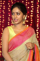 Anu Emanuel Looks Super Cute in Saree ~  Exclusive Pics 053.JPG
