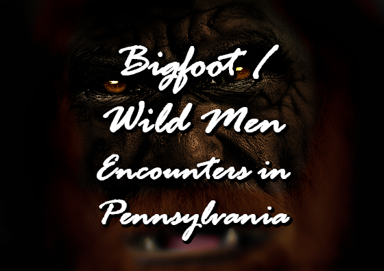 Bigfoot / Wild Men Encounters in Pennsylvania
