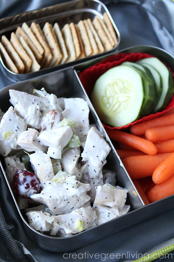 Easy gluten free bento box ideas - featuring chicken salad, almond crackers, cucumbers and carrots