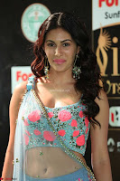 Amyra Dastur in Flower Print Choli Transparent Chunni at IIFA Utsavam Awards013.JPG