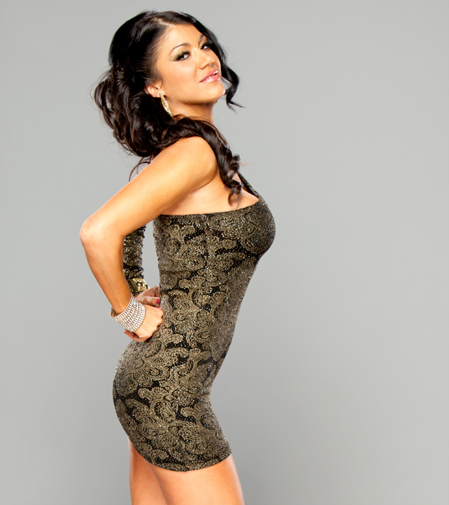 Rosa Mendes Wwe Diva Champion Hot Hd Wallpapers 2013 | All ...