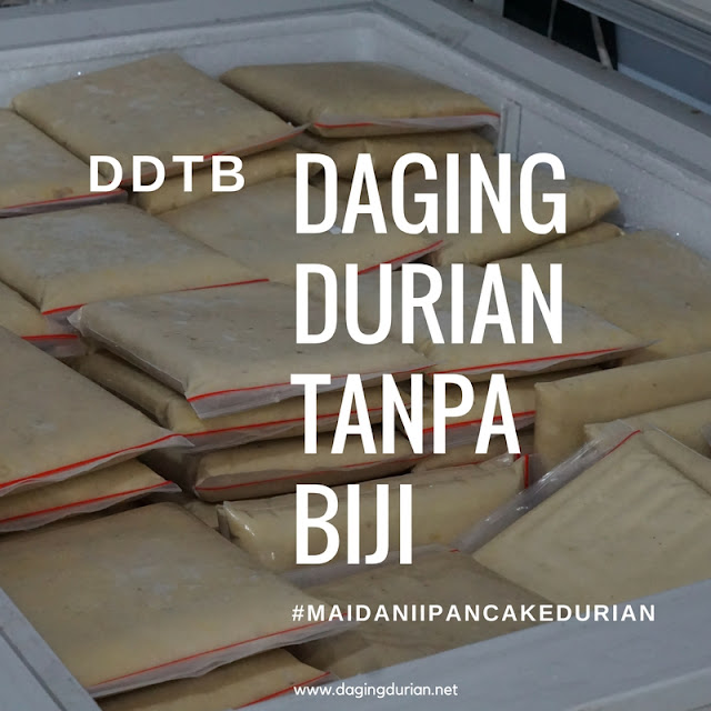 produsen-daging-durian-medan-maidanii-di-mappi