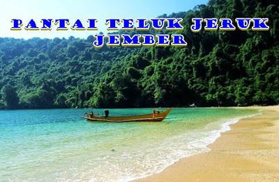 Teluk Jeruk Jember