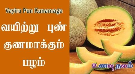 Muskmelon Benefits in Tamil