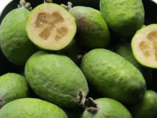 Feijoa Fruit Pictures