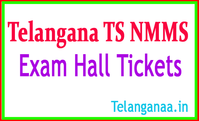 Telangana TS NMMS Hall Tickets