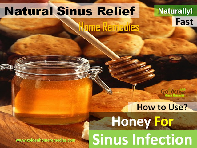 Honey For Sinus Infection, How To Use Honey For Sinus Infection, Sinus Pain, how to get rid of sinus infection, home remedies for sinus infection, sinus infection relief overnight fast, how to cure sinus infection, how to treat sinus infection, home remedies for sinus pain, sinus infection treatment, cure sinus infection, sinus infection home remedies, remedy for sinus infection, treatment for sinus infection, best sinus infection treatment, sinus infection remedy,