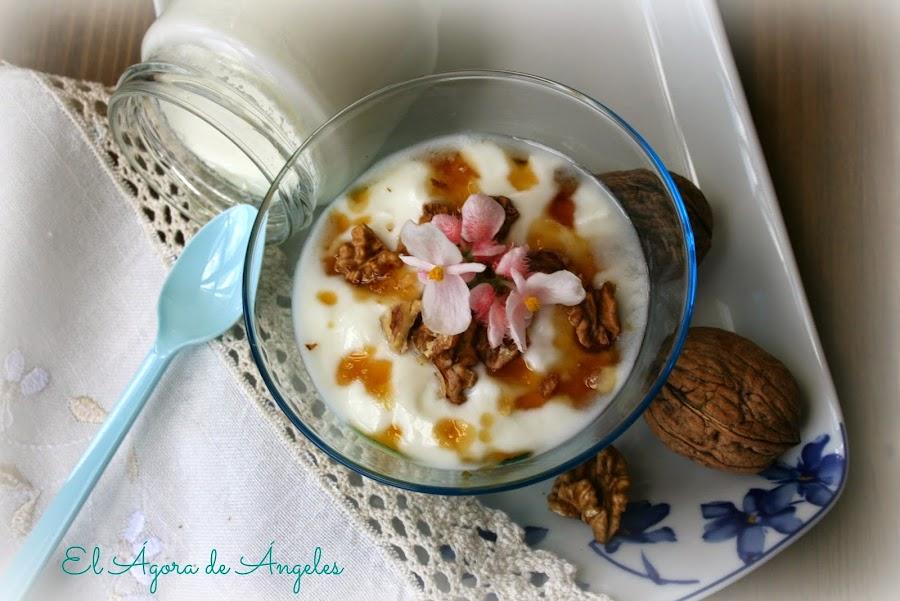 yogur griego casero yogures postres