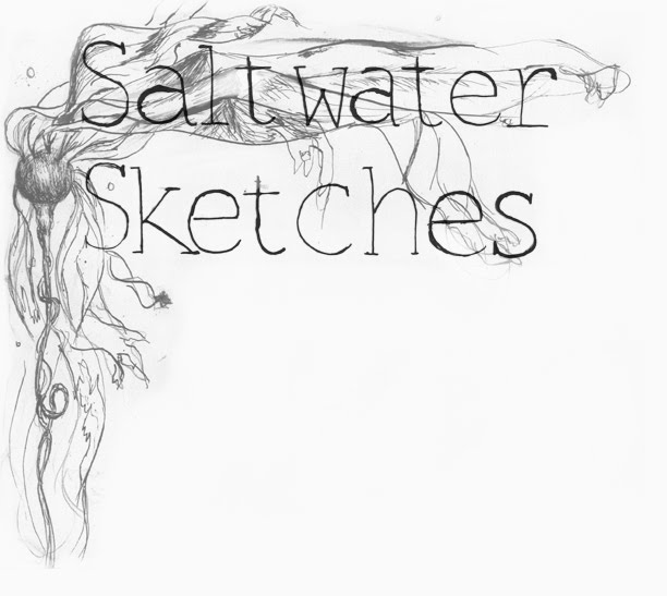 Saltwater Sketches: Andy Goldsworthy