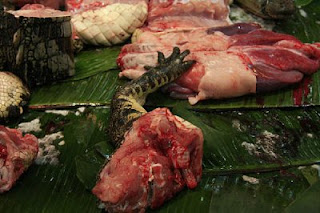 Crocodile meat, Guangzhou, Guangdong, China