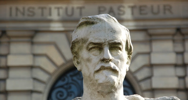 Louis Pasteur y biologia