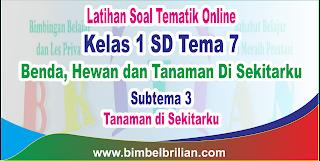 Soal Tematik Online Kelas 1 SD Tema 7 Subtema 3 Tanaman di Sekitarku Langsung Ada Nilainya