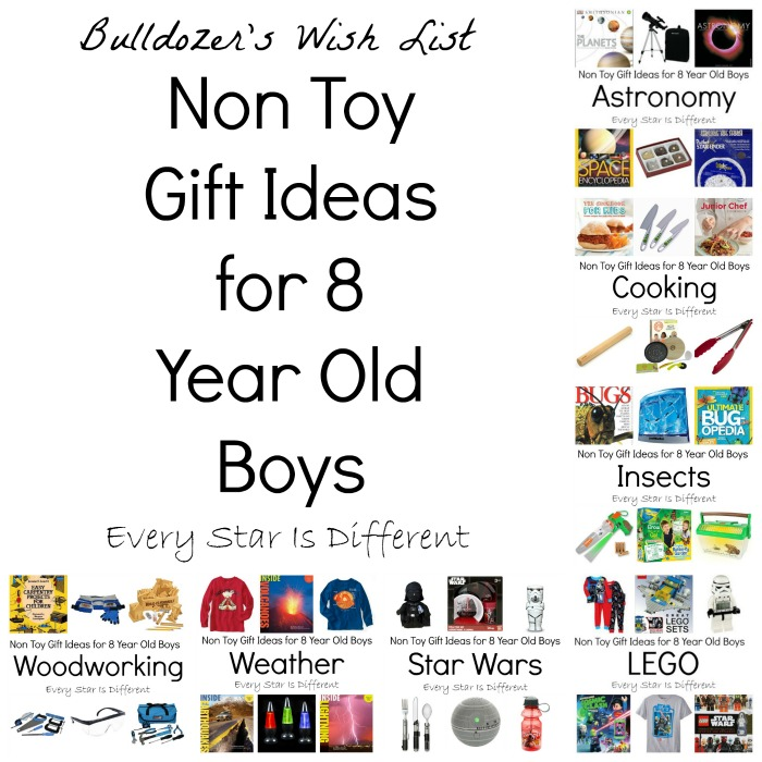 Non Toy Gift Ideas for 8 Year Old Boys