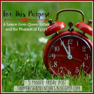 For This Purpose {Five Minute Friday}