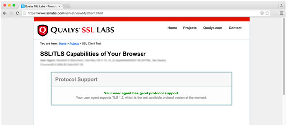 Screenshot of compliance test website