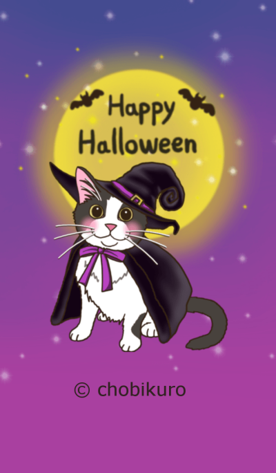 Cats Theme for cats lovers(Halooween)
