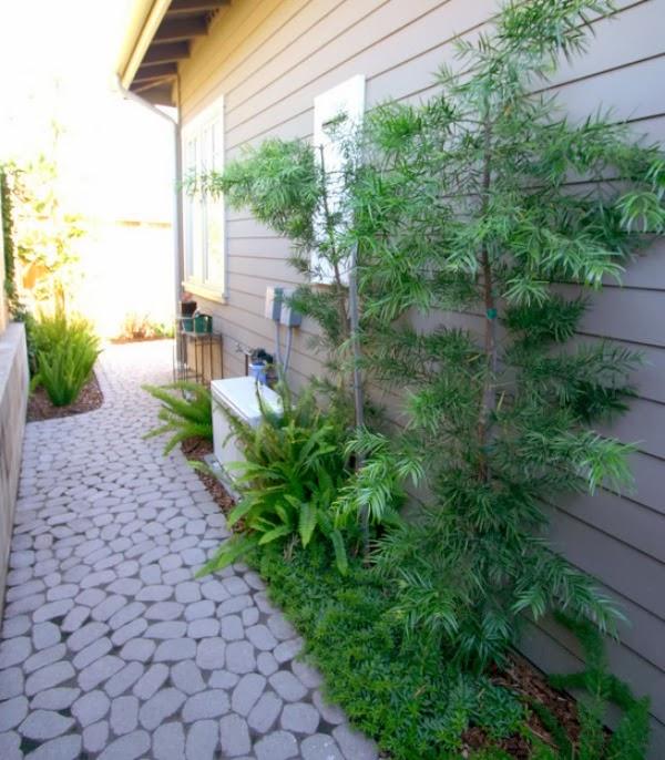 Jardincito en zona auxiliar