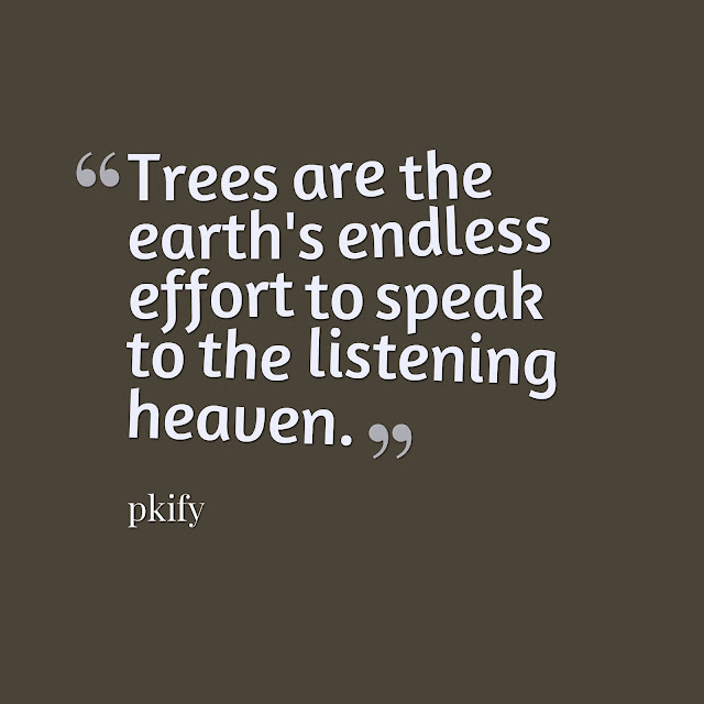 Trees are the Earth's Endless Effort to Speak to the Listening Heaven Nature Quotes