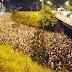 PM divulga esquema de segurança da 255ª Romaria da Penha