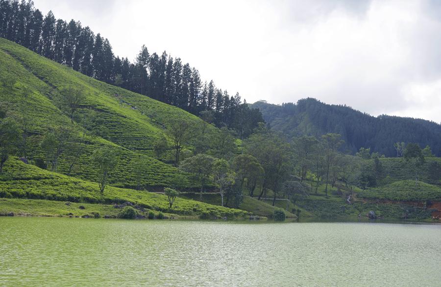 Jezioro Sembuwatte