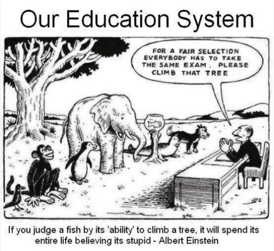 Polliwogs to Frogs: Standardized Test Stress!