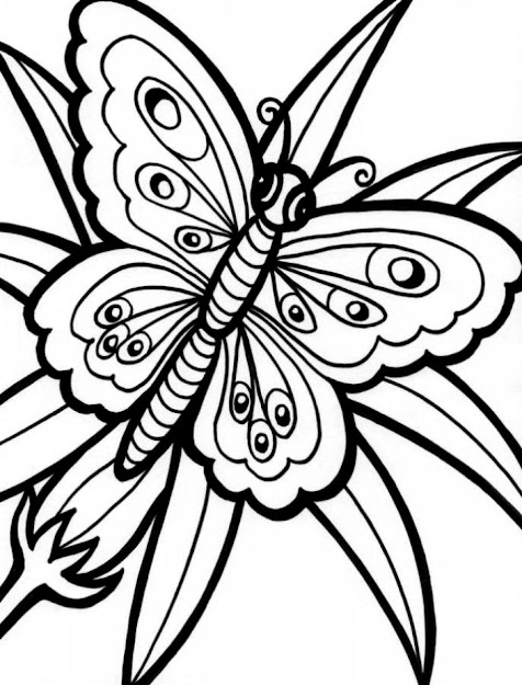 Flowers And Butterflies Coloring Pages Eassume Inside Flowers And Butterflies  Coloring Pages
