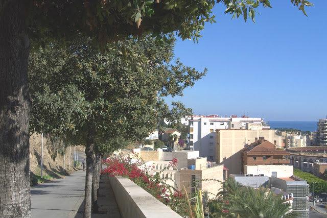 Portowe miasto Malaga, widok na miasto z góry