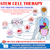 India Is Providing Access To Stem Cell Therapy For Treating Chronic Diseases