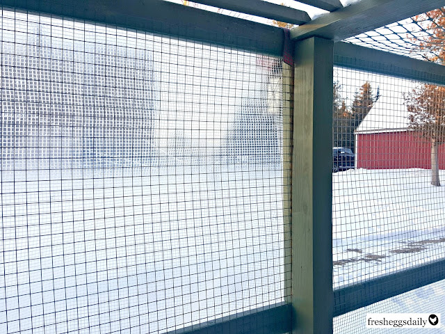 How To Winterize Your Chicken Run Fresh Eggs Daily 174