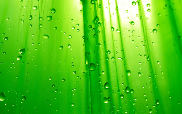 Green Wallpaper Cantik