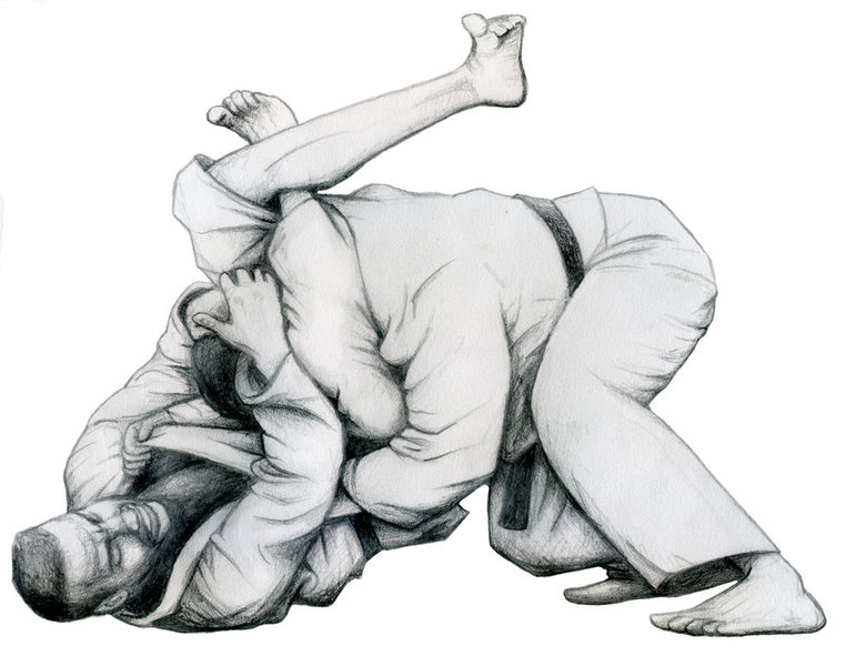 Maggie Moo Does Jiu Jitsu: May 2015