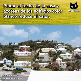 Según estudios realizados, pintar los techos de la casa color blanco reduce el calor hasta un 30%