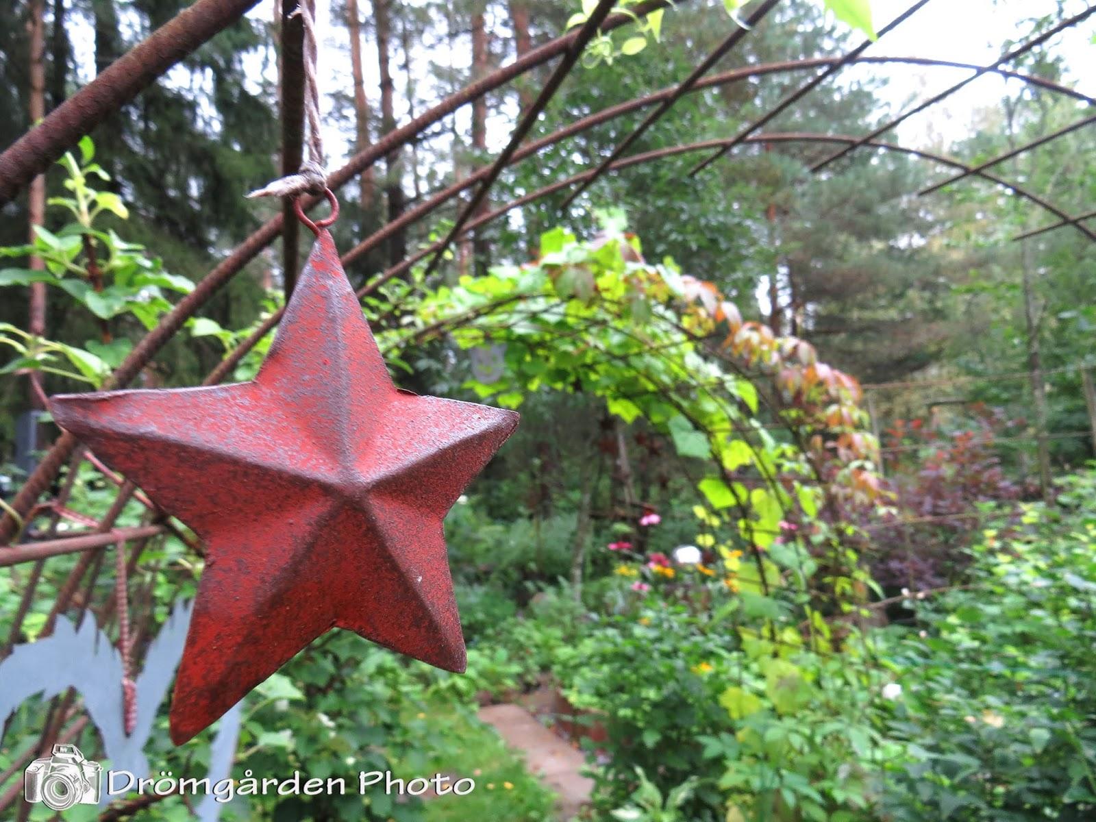 Drömgården: Dahlstrands trädgård