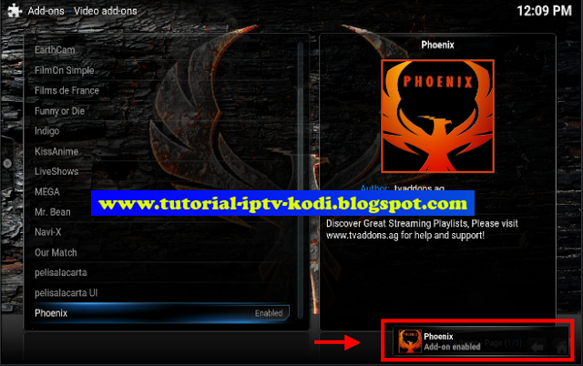 phoenix (Germany) - Live Stream | FirstOne TV - Watch TV when and