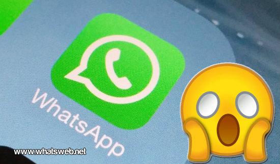 WhatsApp solo sera para mayores de 16