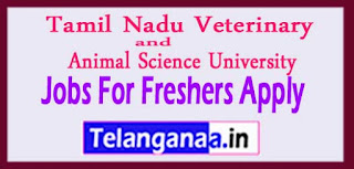 Tamil Nadu Veterinary and Animal Sciences University TANUVAS Recruitment Notification 2017 Last Date 21-03-2017