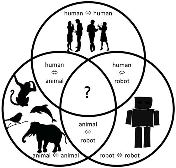 看屬性還是看關係?機器人(或動物)的道德地位問題|社技哲學.TECHNOSOPHY