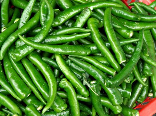 व्यंजन की जान हरी मिर्च